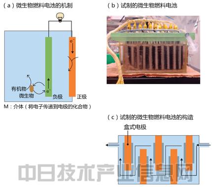 利用微生物制作燃料电池