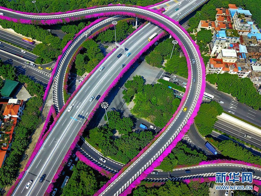 """广州:灯海花城向世界展示""""财富美"""""""
