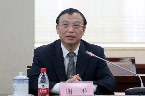 中国进出口银行:帮助发展是目标重大项目是抓手