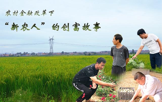"""农村金融改革下 """"新农人""""的创富故事"""