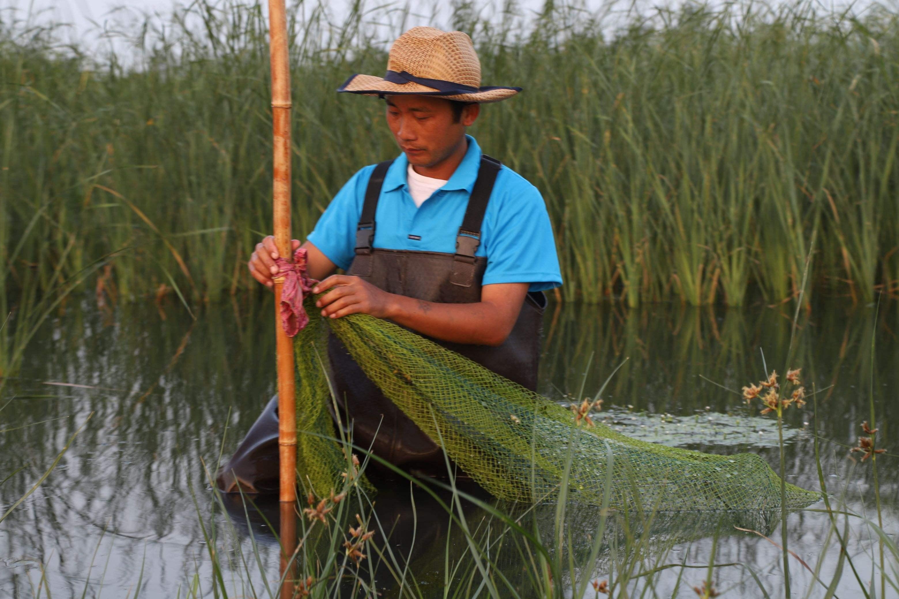 《小龙虾产业发展报告(2019)》发布