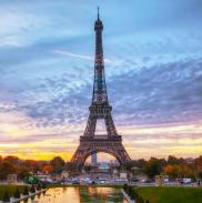 法国法国企业热切期待第二届进博会