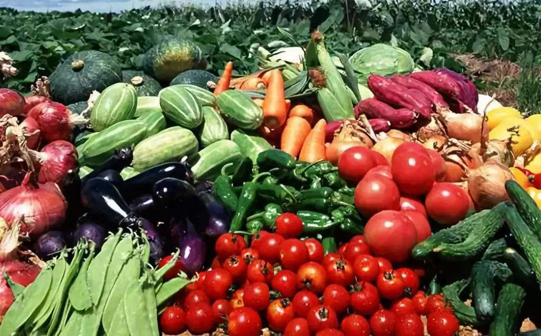 我國主要農產品例行監測合格率達97.4%