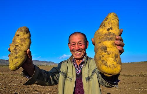 """土豆种子论粒卖、喝得惯凉水的""""泥腿子""""……五段暖心""""小故事""""报告村子振兴""""大文章"""""""