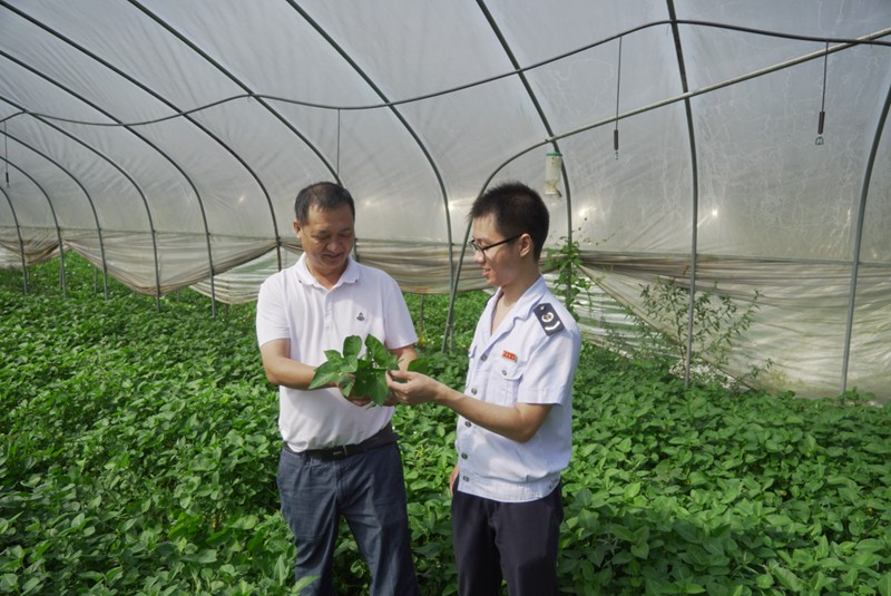 税费优惠政策落地见效 我国农业现代化发展动力足