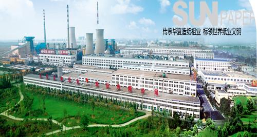 太阳纸业简介--人民网经济频道-上这里,懂中国