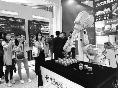 人工放流能救中華鱘嗎?